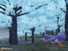 Rappelz_screenshots_Unicorn-Forest