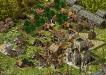 ss_village