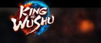 Age Of Wushu Sequel Announced – King Of Wushu MOBA